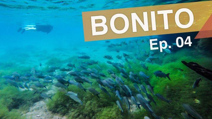 Bonito – Brasil :: Ep. 04 :: Nascente Azul – Gruta de São Miguel – Trilha Boiadeira :: 3em3